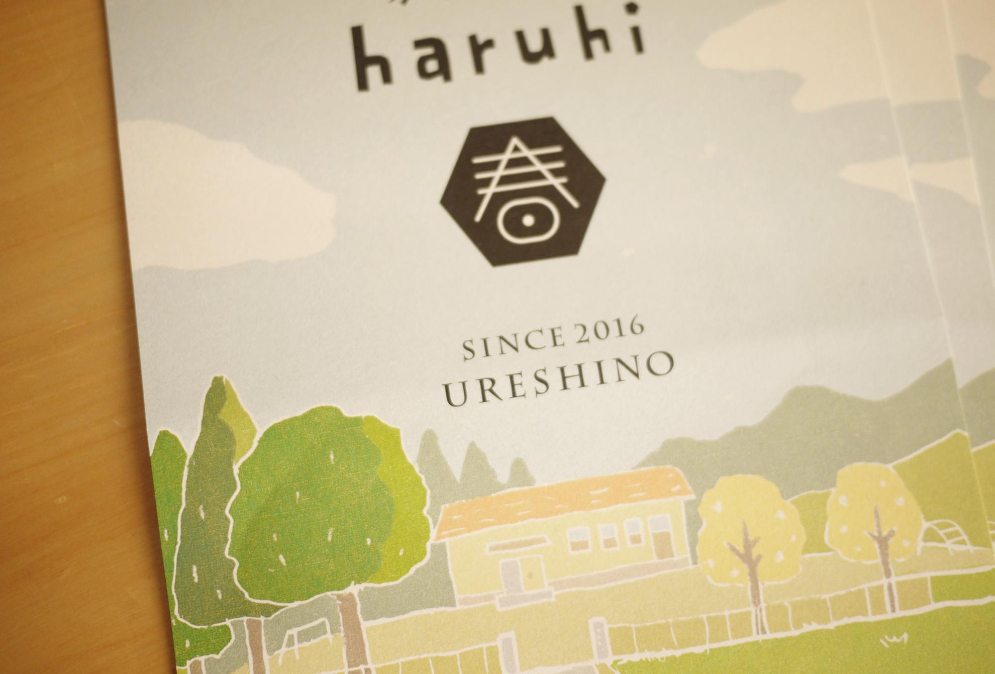 haruhi01